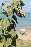 Momentaufnahme am Strand von Agios Stefanos auf der ionischen Insel Korfu