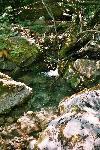Im Frühjahr sind die Bachläufe oft reissende Flüsse
